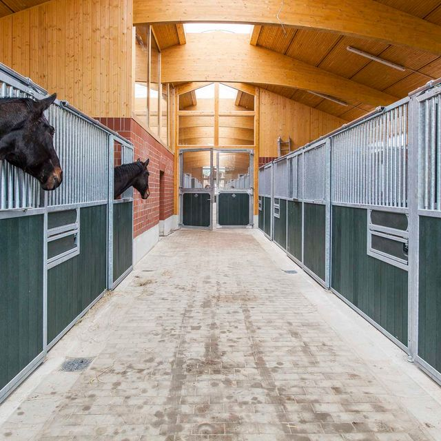 Impressions of the Nindorf Equine Hospital